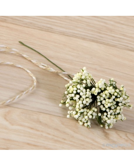 Bouquet de flores blancas.
